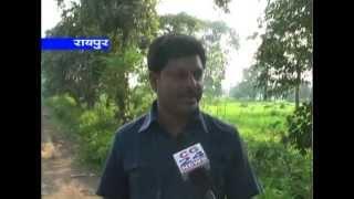 cg 24 news 15-9-2013