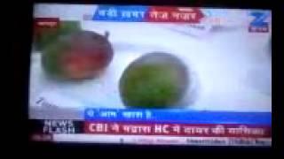 National Media Club Mango Festival Kanpur !