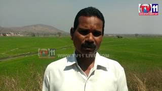 KADEM  PROJECT  WATER  RELEASE REQUEST FOR  RABI  TV11 NEWS 24TH  FEB 2017
