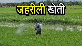 ज़हरीली खेती   अशोक वानखेड़े   व्हिसलब्लोवर न्यूज़ इंडिया