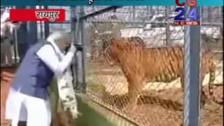 PM Narendra Modi Tiger Pic Clicking - Jangal Safari Raipur CG