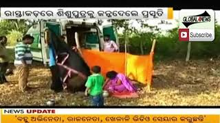 108 Ambulance not supported interior Kandhamal Area | Odisha Khabar