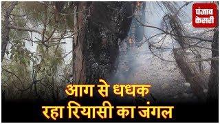 आग से धधक रहा रियासी का जंगल, चॉपर इस्तेमाल करने पर प्रशासन का अटपटा सा जवाब