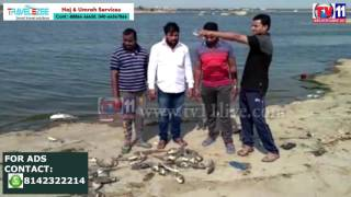 LAKHS OF FISH DIED LOCALS SUFFER WITH BAD SMELL AT SHAMIR PET LAKE TV11 NEWS 21ST MAY 2017