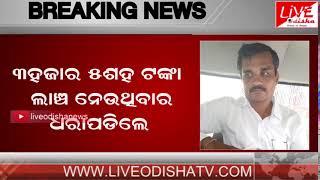 BREAKING NEWS : Patrapur Vigillance Raid