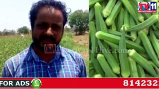 FARMERS ANGUISH FOR PROPER SUPPORT PRICE TO VEGETABLE CROPS AT PRAKASAM TV11 NEWS 9TH JUNE 2017