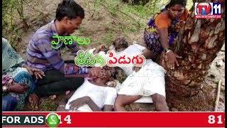 THREE FARMERS DIED DUE TO THUNDERBOLT AT ATMAKUR MAHBUBNAGAR TV11 NEWS 17TH JUNE 2017