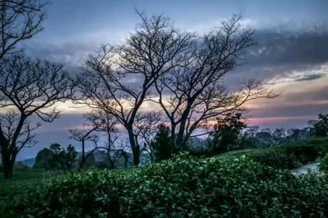 Dharamshala Timelapse - Amadnomad