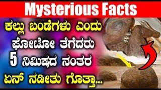 ಕಲ್ಲು ಬಂಡೆಗಳು ಎಂದು ಫೋಟೋ ತೆಗೆದರು 5 ನಿಮಿಷದ ನಂತರ ಏನ್ ನಡೀತು ಗೊತ್ತಾ? | Kannada News