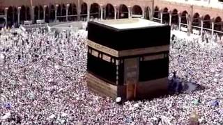 EID-UL-ZOHA (BAKRID) MUBARAK TO ALL TV11 VIWERS TV11 NEWS URDU 2ND SEP 2017