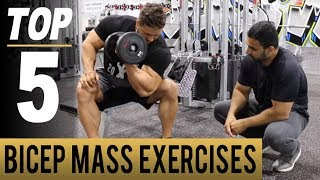 Top 5 BICEP MASS EXERCISES! (Hindi / Punjabi)