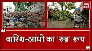 Toofan ने मचाई तबाही, उखाड़ फेंके trees