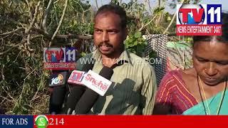 BHIMAVARAM VILLAGE PEOPLE FACE PROBLEMS , VISAKHA | Tv11 News | 23-01-2018