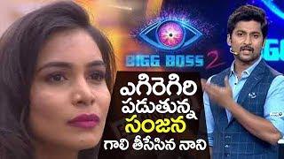 Hero Nani Gives Perfect Reply to Sanjana anne Comments | NANI IPHONE China Phone Joke | Bigg Boss 2