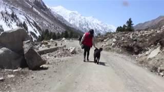Chitkul Road Trip #wravelerforlife