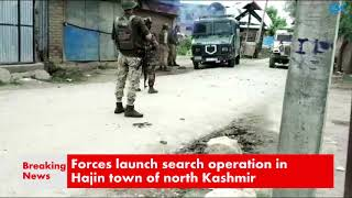 Forces launch search operation in Hajin town of north Kashmir