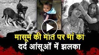 आदमखोर कुत्तों के नोंचने से मासूम की मौत, इंसाफ मांगती मां की आंखों से नहीं रुक रहे आंसू