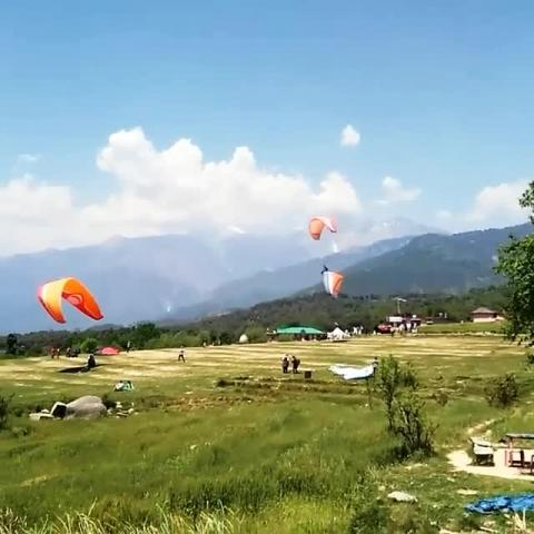 Paragliding, Landing Site Bir. Tag Your friends with whom you want to take a ride.