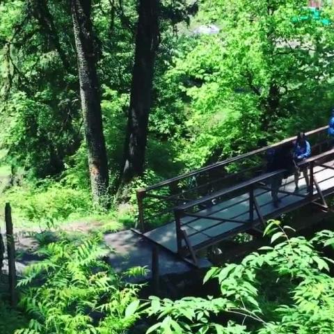 Kheerganga video by Traveller