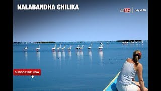 """Incredible Odisha"" 
