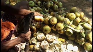Toddy Palm Fruits | Amazing Palm Fruit Cutting Skills (Taati Munjalu) | Indian Street Food