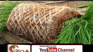 Bastora Farmers Get State Of The Art Paddy Seeding Machine