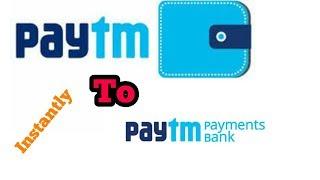PAYTM WALLET TO PAYTM PAYMENT BANK || तुरंत फण्ड ट्रान्सफर करें