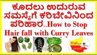 how to stop hair loss very fast with curry leaves..curry leaves for hair loss...