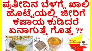 Amazing benefits of Cumin Water (Jeera water)..KannadaSanjeevani