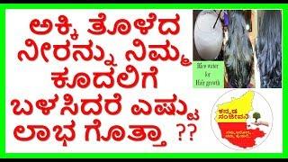 Rice Water for Fast Hair Growth..Kannada Sanjeevani