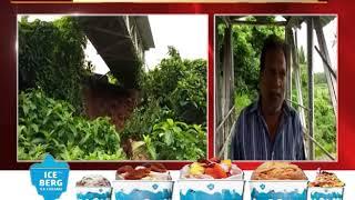 Footbridge In Danger Of Collapse At Mormugao