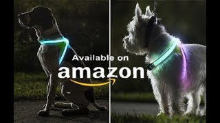 7 Amazing Gadgets Every Pet Owner Must Have Availabe On Amazon