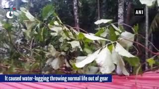 Kerala Rains: Heavy rains wreak havoc in Kerala's Alappuzha
