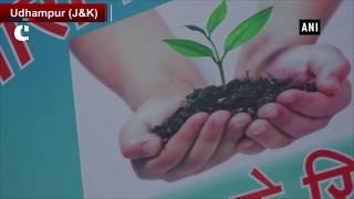 CRPF 187 Battalion plants Chinar trees to curb valley's pollution level problem