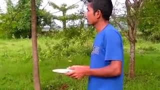 মানুহৰ মাত বুজি পোৱা চৰাই- NDTV Live