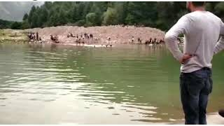 Two Brothers Drowned In Srinagar Harvan,Dead Bodies Recovered.
