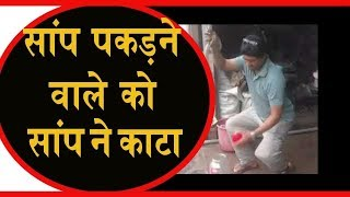 #BreakingNews Snake catcher bitten by cobra Snake Viral Video 2018
