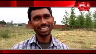 [UTTAR PRADESH]/ FARMERS crops also suffered heavy losses due to heavy rain