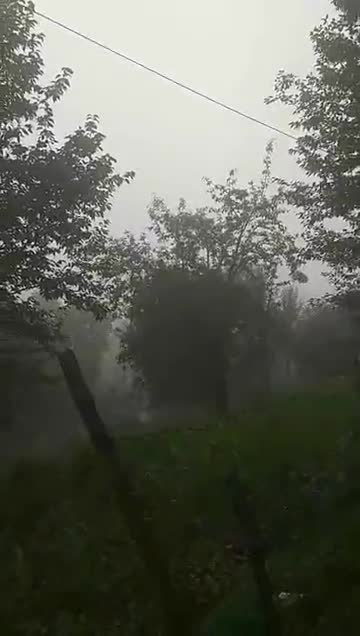 Foggy weather naddi village