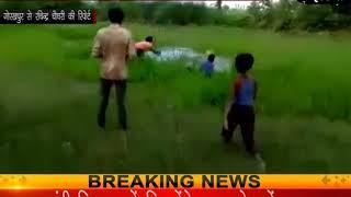 नीलगाय को मारने का वीडियो वायरल, दो गिरफ्तार