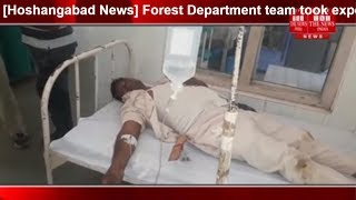 [Hoshangabad News] Forest Department team took expensive action during lumbering/THE NEWS INDIA