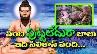 Sri Veera Brahmendra swamy vari charithra  I Human look alike Pig I RECTV INDIA