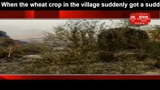 When the wheat crop in the village suddenly got a sudden fire in of Doki Thana areaTHE NEWS INDIA