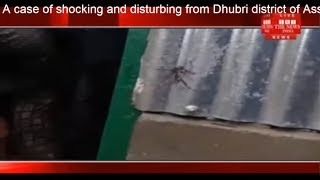 A case of shocking and disturbing from Dhubri district of Assam came to light THE NEWS INDIA