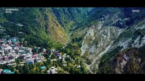 Life in Dharamshala - Hopping Bug