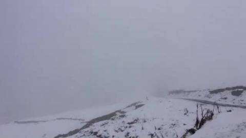 On the way to Bir Billing - Video by Sarthak