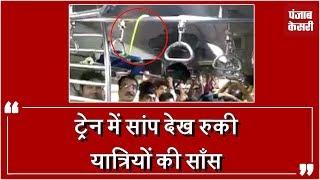 मुंबई की लोकल ट्रेन में चढ़ा साँप, मची अफरा-तफरी