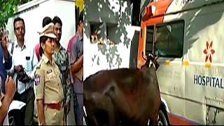 Kidnapping And Selling Of Animals In Ambulance | Thief's Caught With The Ambulance In Secunderabad .