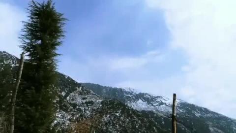 Macleodganj - Dharamshala - Tanya Khanijow