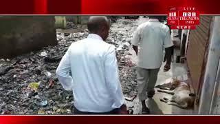 [ Allahabad News ] इलाहाबाद नगर निगम लापरवाही, राजापुर हनुमान मंदिर के पास कचरे का ढेर